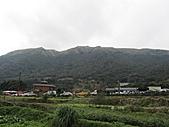 陽明山、竹子湖賞花行:IMG_3013.jpg