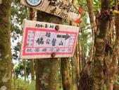 新竹五峰郷大窩山、鳥嘴山:IMG_7756.jpg