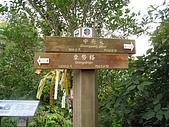 平溪中央尖、臭頭山:IMG_3395.jpg