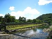 獅公髻尾山:IMG_8148.jpg