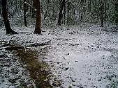 北插雪景:P3050072