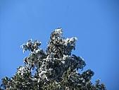 雪蓋復興尖、冰封塔曼山:IMG_2490.jpg