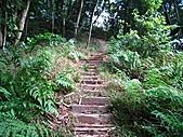 鳶尾山、鳶山東峰、福德坑山、鳶山:IMG_4715.jpg