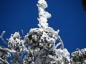雪蓋復興尖、冰封塔曼山:IMG_2537.jpg