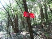 小烏來上北插天山:IMG_6976.jpg