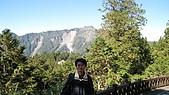阿里山:IMG_0421.jpg