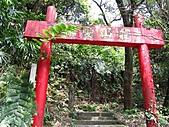 基隆紅淡山:IMG_3493.jpg