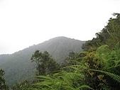 水社大山:IMG_2608.jpg