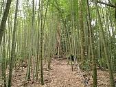 水社大山:IMG_2517.jpg